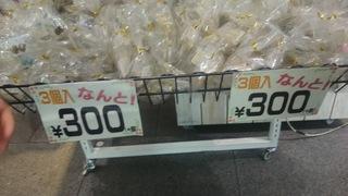 DSC_7507.JPG