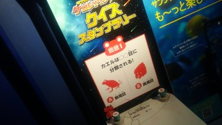 DSC_7764.JPG