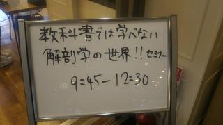 DSC_8511.JPG